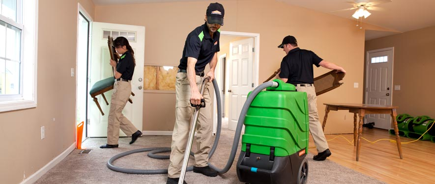 Roanoke, VA cleaning services